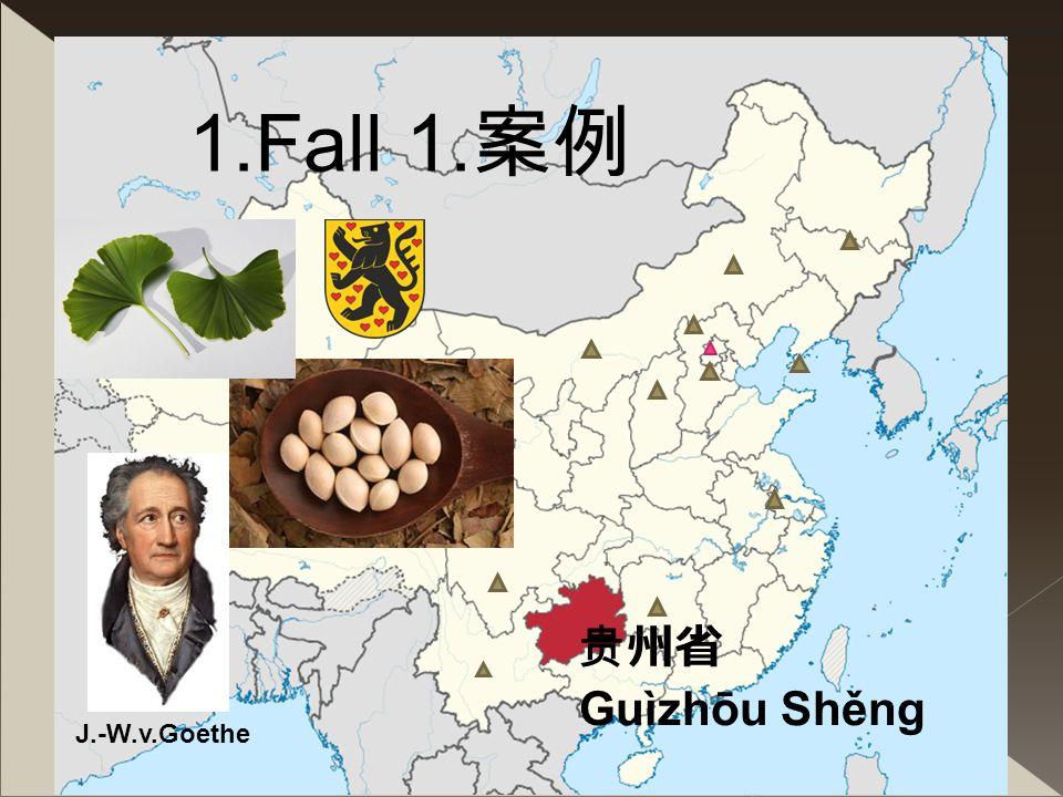 1.Fall 1.案例 贵州省 Guìzhōu Shěng J.-W.v.Goethe Fallsynonym = Rätsel