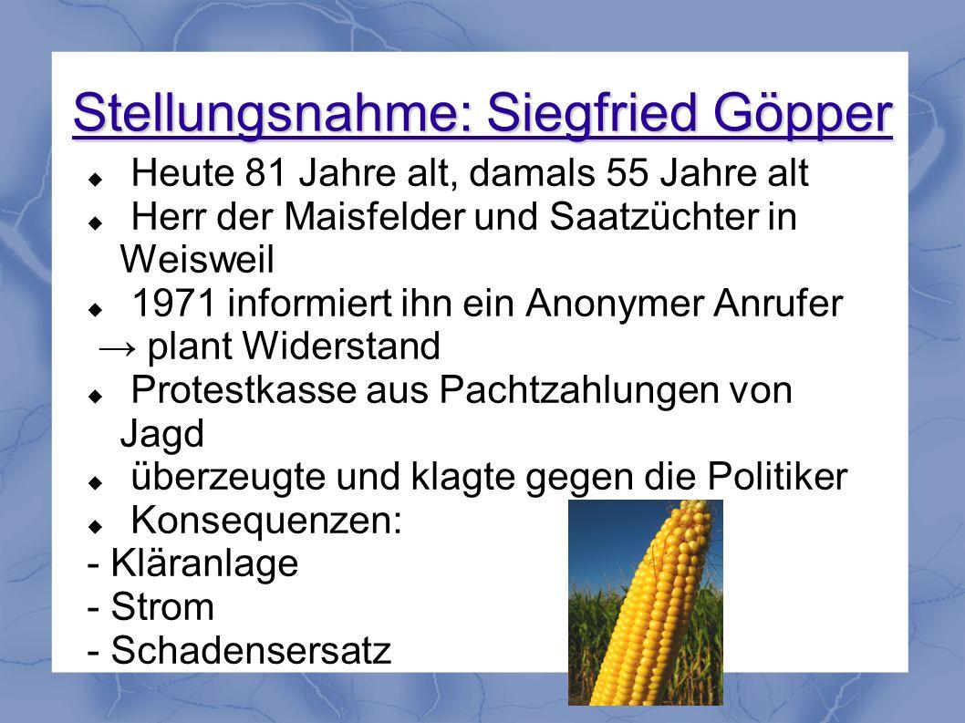 Stellungsnahme: Siegfried Göpper