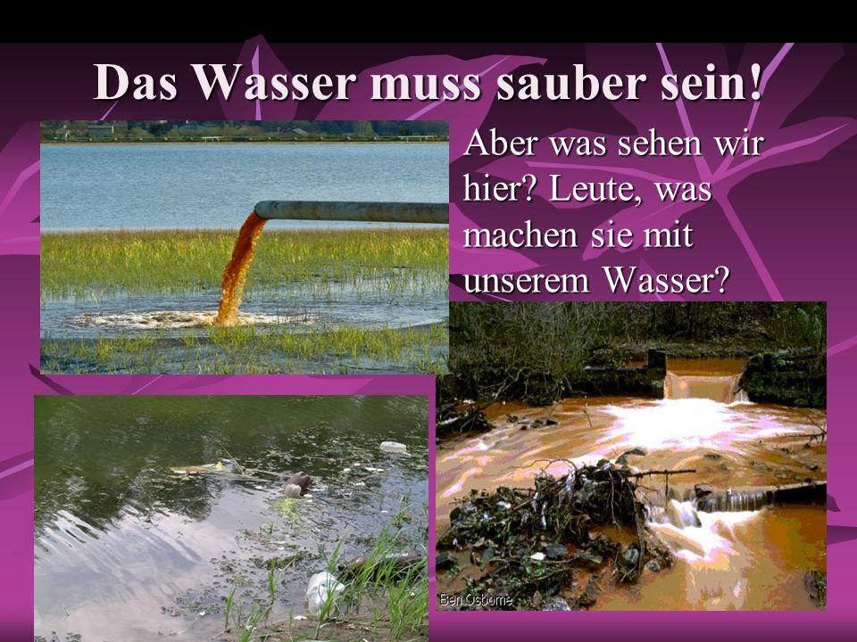 Das Wasser muss sauber sein!