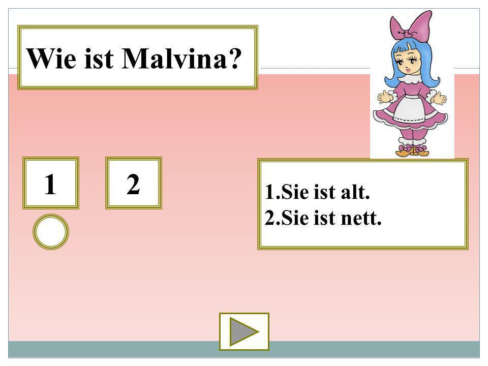 Wie ist Malvina 1 2 1.Sie ist alt. 2.Sie ist nett.