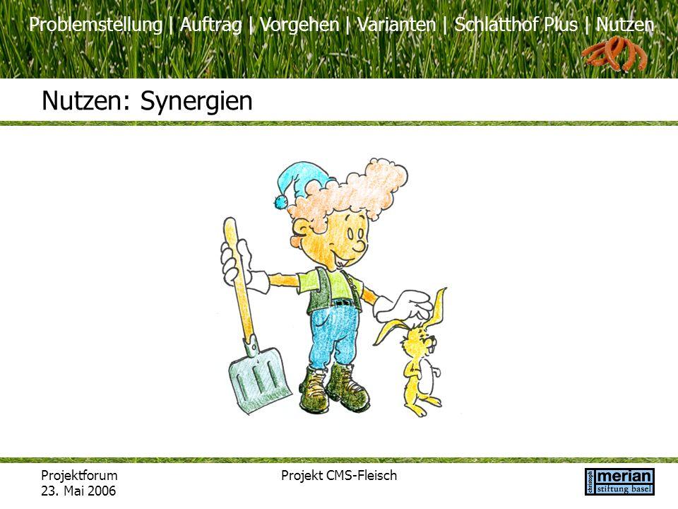 Nutzen: Synergien Projektforum 23. Mai 2006 Projekt CMS-Fleisch