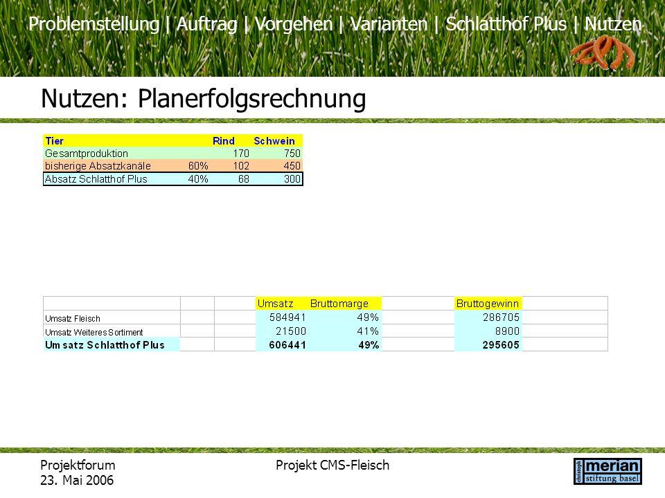 Nutzen: Planerfolgsrechnung