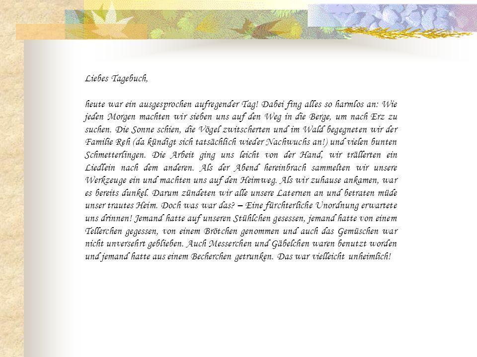 Liebes Tagebuch,