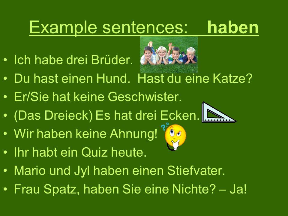 Example sentences: haben