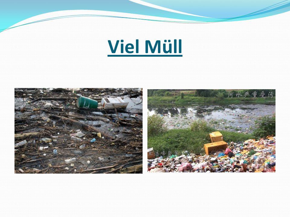 Viel Müll