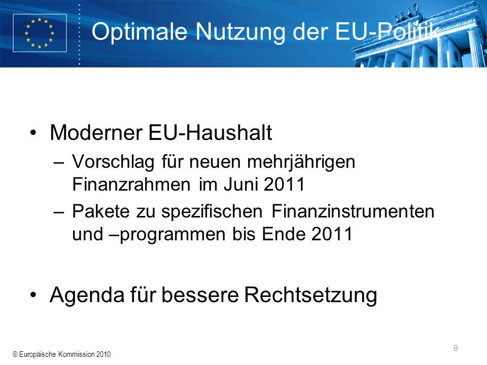 Optimale Nutzung der EU-Politik