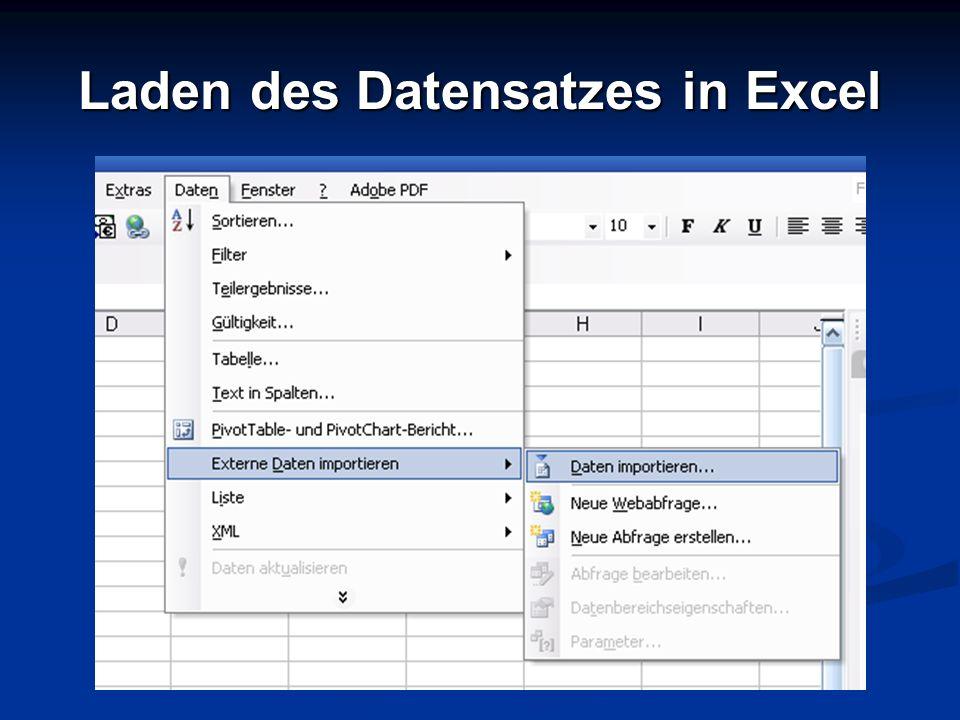 Laden des Datensatzes in Excel