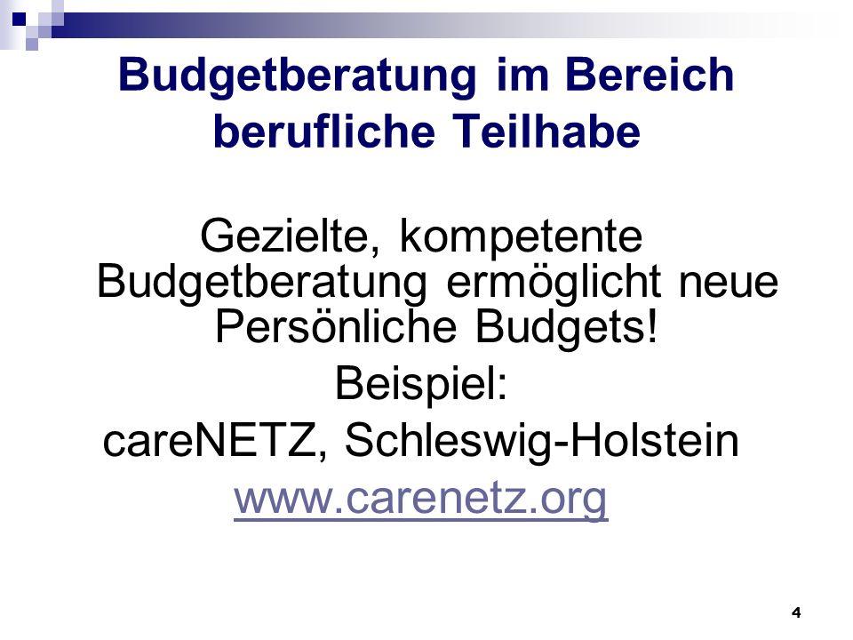 Budgetberatung im Bereich berufliche Teilhabe