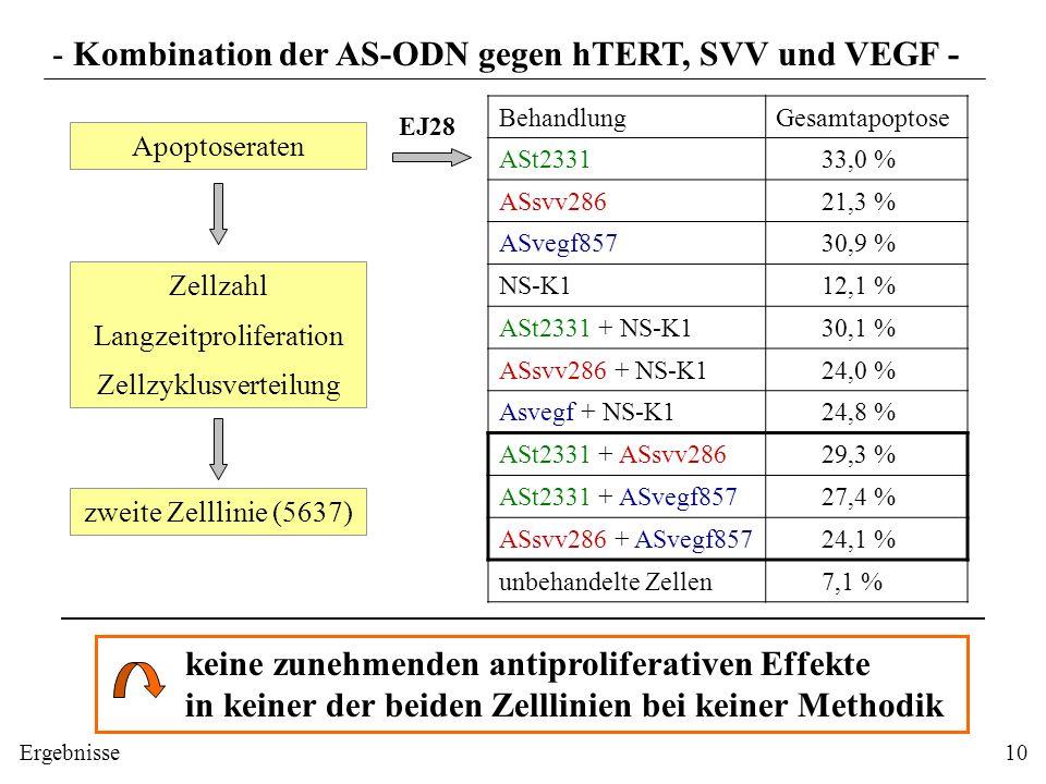 - Kombination der AS-ODN gegen hTERT, SVV und VEGF -