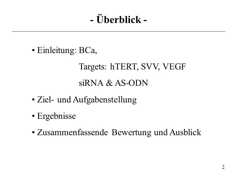 - Überblick - • Einleitung: BCa, Targets: hTERT, SVV, VEGF