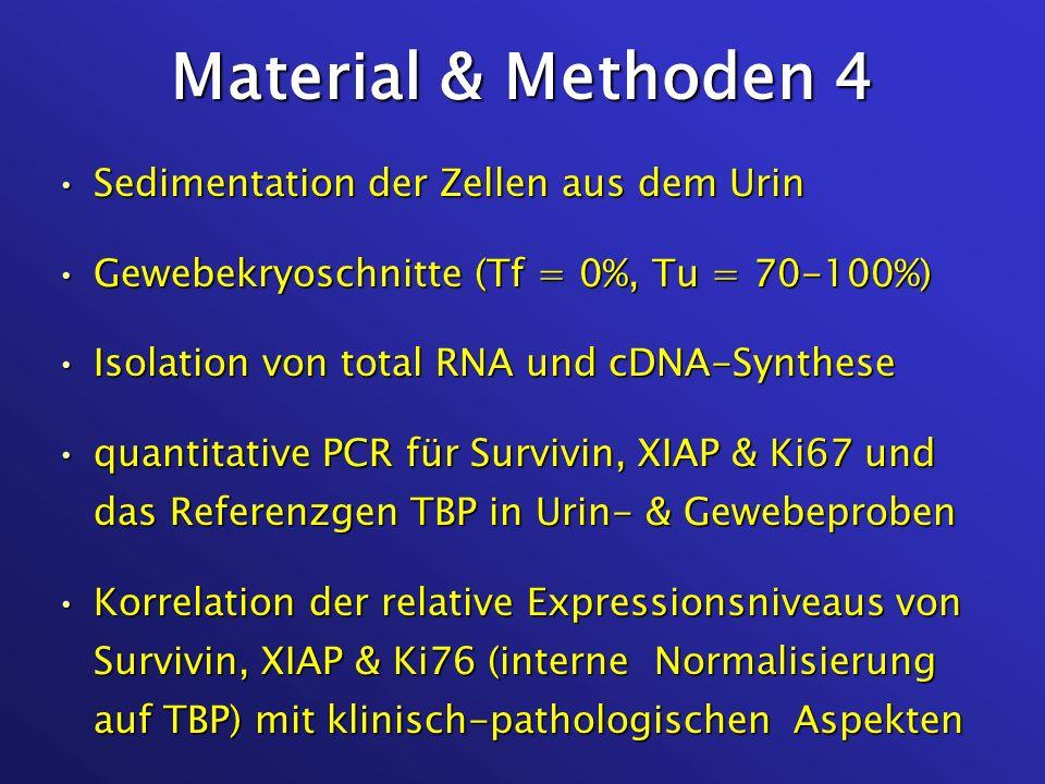 Material & Methoden 4 Sedimentation der Zellen aus dem Urin