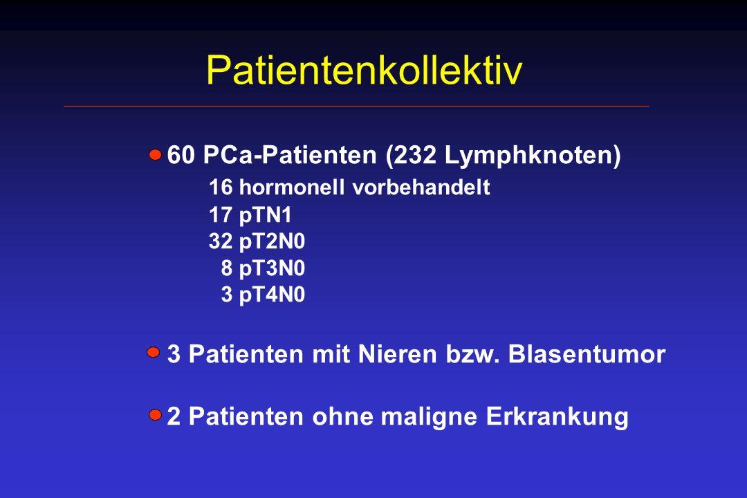 Patientenkollektiv 16 hormonell vorbehandelt