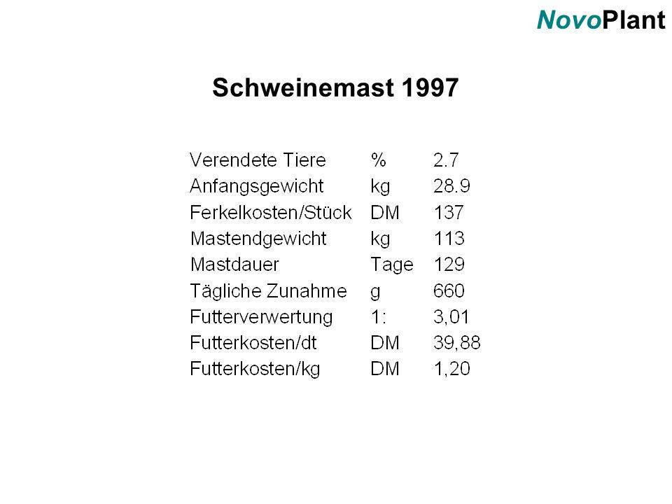 Schweinemast 1997