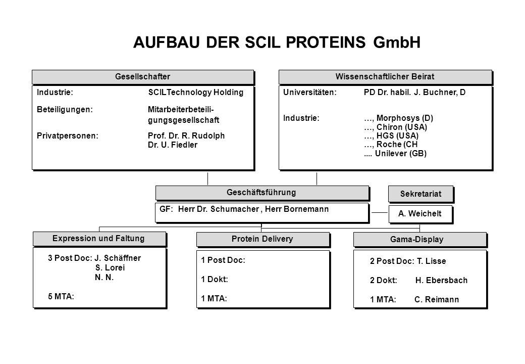 AUFBAU DER SCIL PROTEINS GmbH