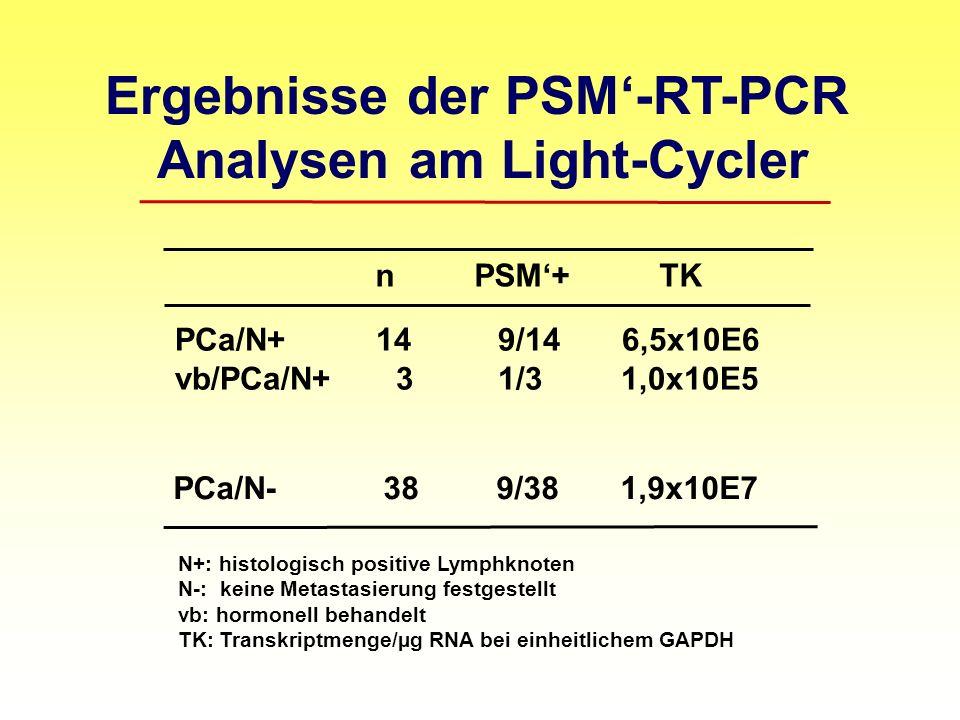 Ergebnisse der PSM'-RT-PCR Analysen am Light-Cycler