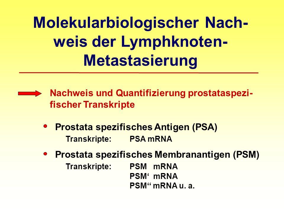 Molekularbiologischer Nach-weis der Lymphknoten-Metastasierung