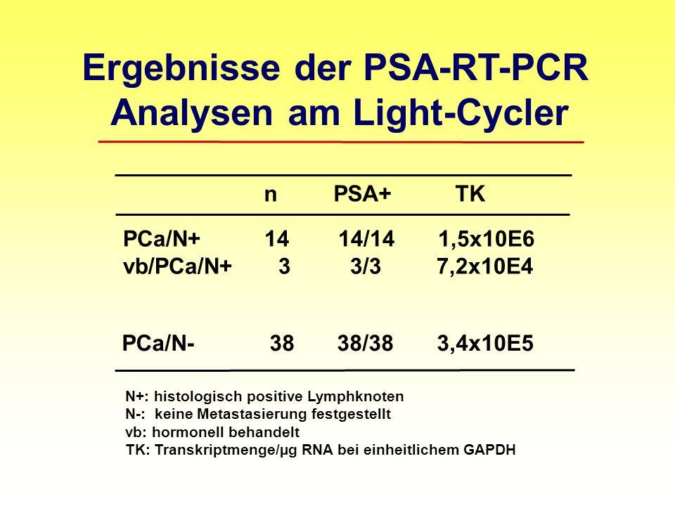 Ergebnisse der PSA-RT-PCR Analysen am Light-Cycler