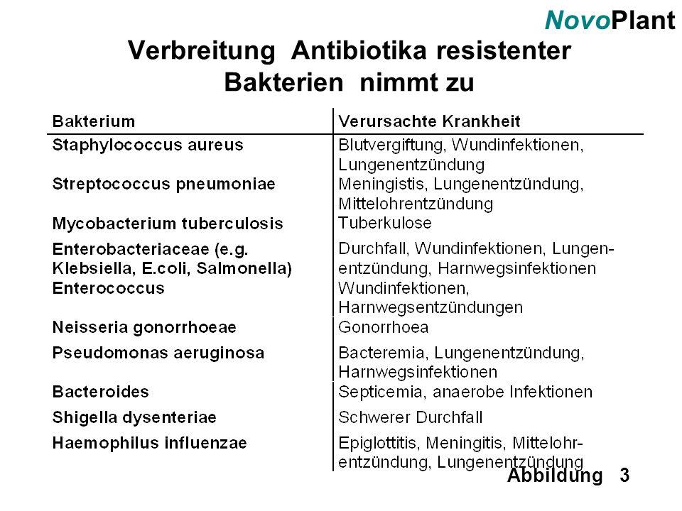 Verbreitung Antibiotika resistenter Bakterien nimmt zu