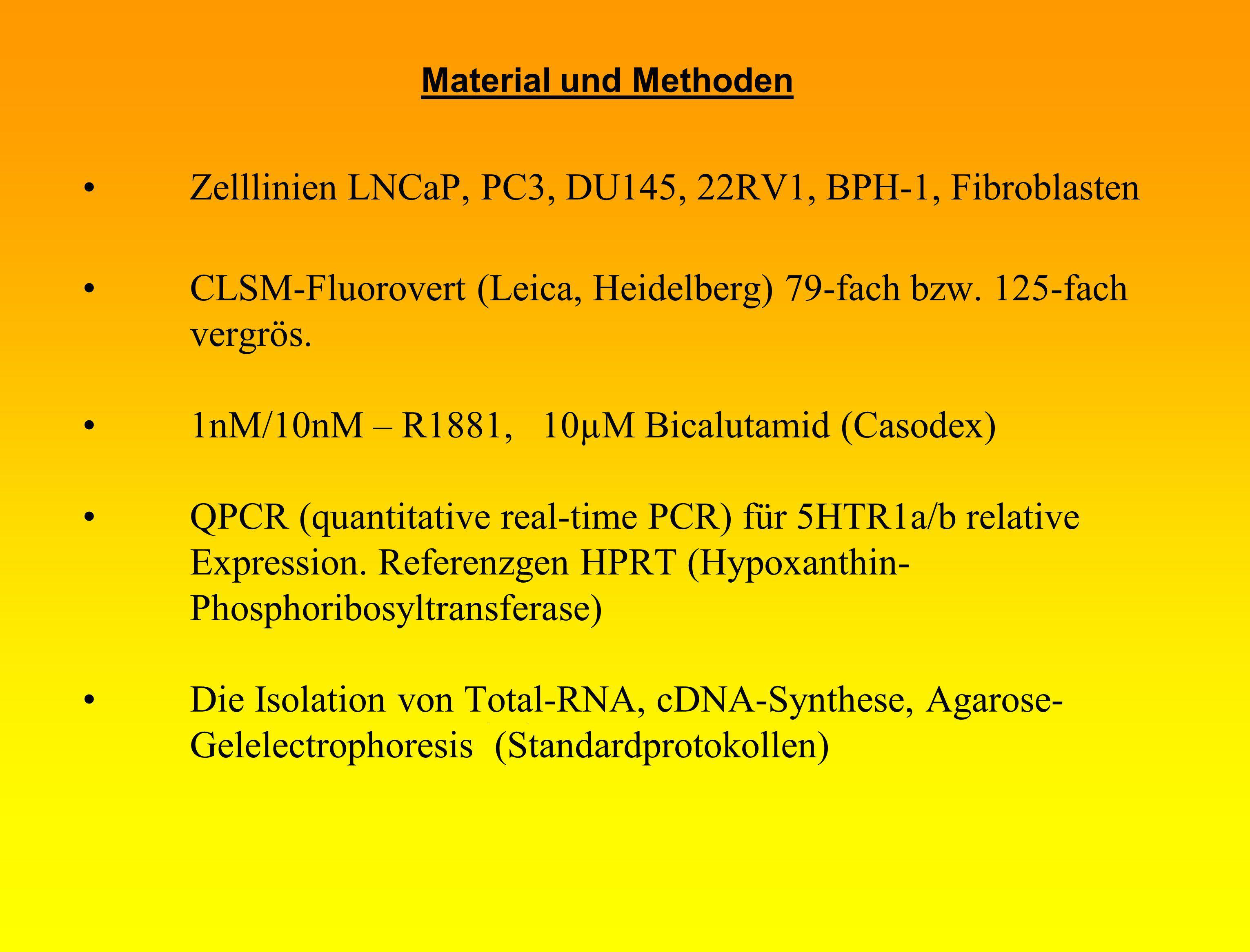 Zelllinien LNCaP, PC3, DU145, 22RV1, BPH-1, Fibroblasten