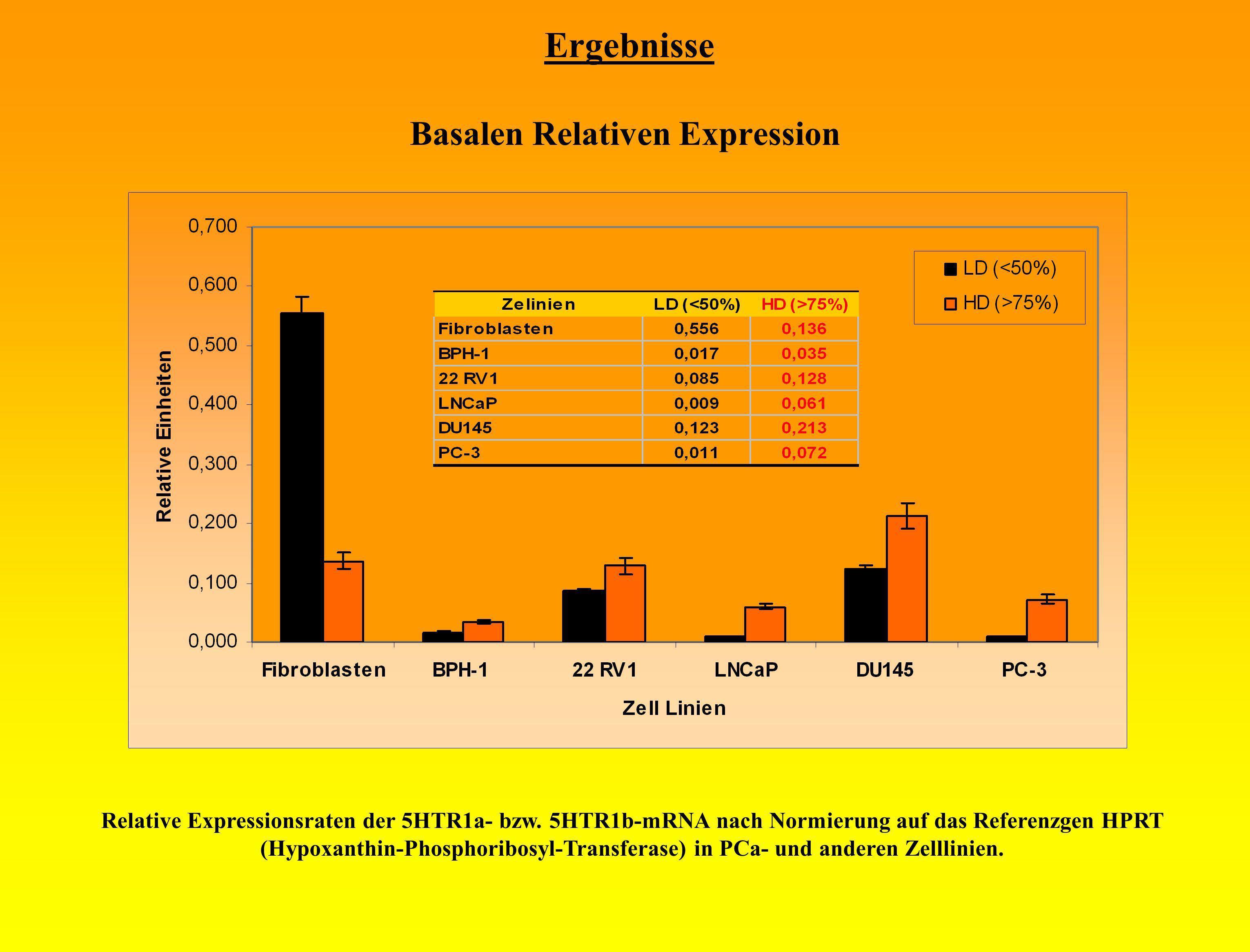Ergebnisse Basalen Relativen Expression