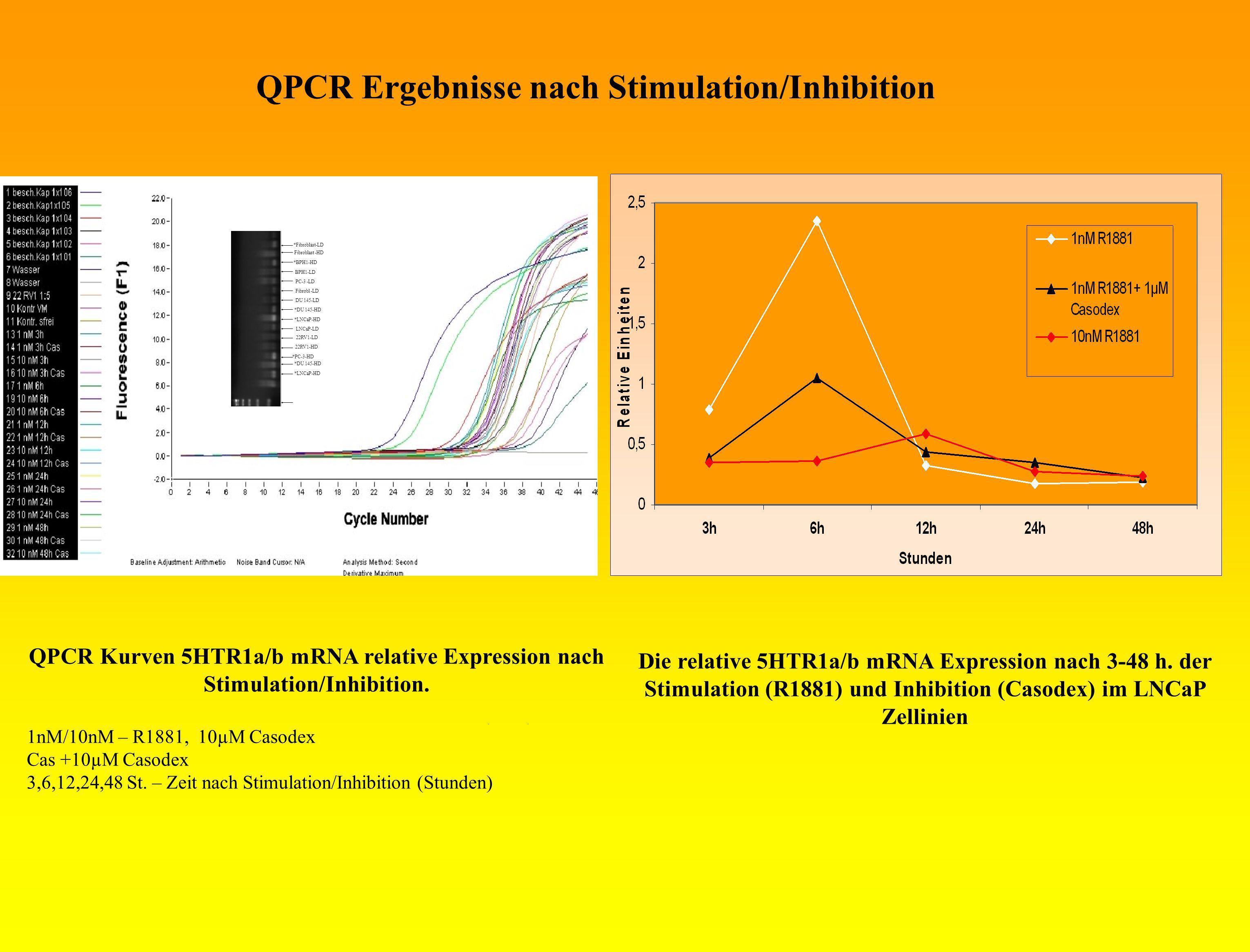 QPCR Ergebnisse nach Stimulation/Inhibition