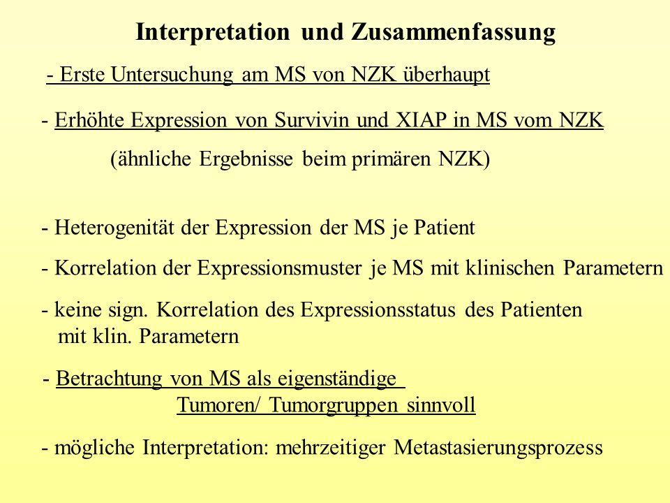 Interpretation und Zusammenfassung