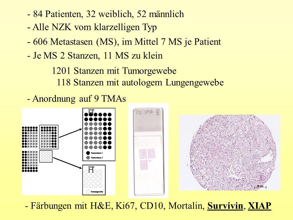- 84 Patienten, 32 weiblich, 52 männlich