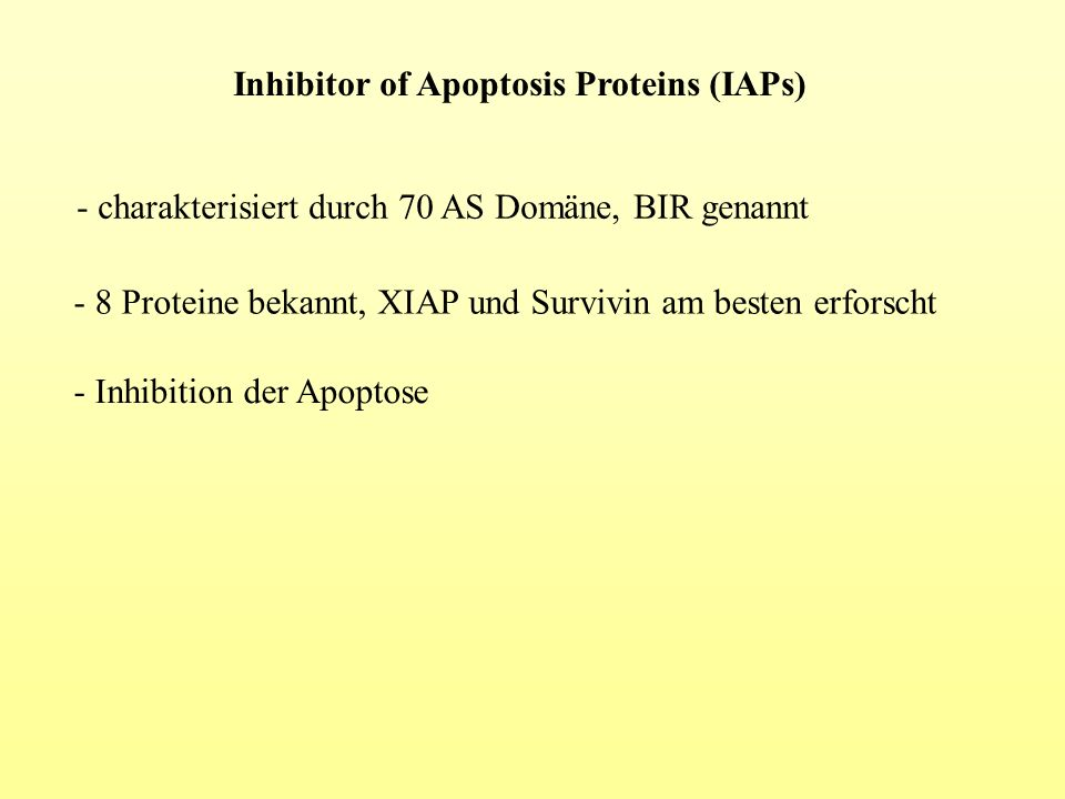 Inhibitor of Apoptosis Proteins (IAPs)