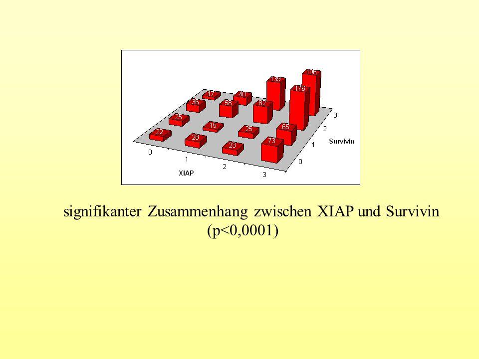 signifikanter Zusammenhang zwischen XIAP und Survivin