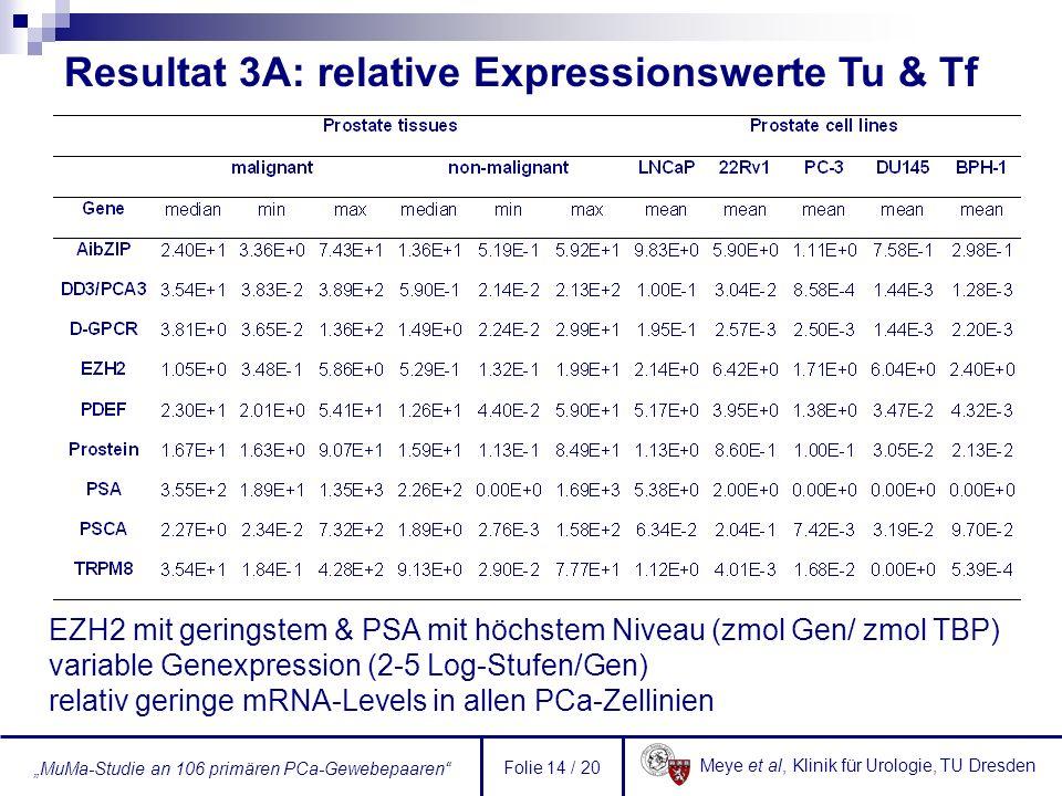 Resultat 3A: relative Expressionswerte Tu & Tf