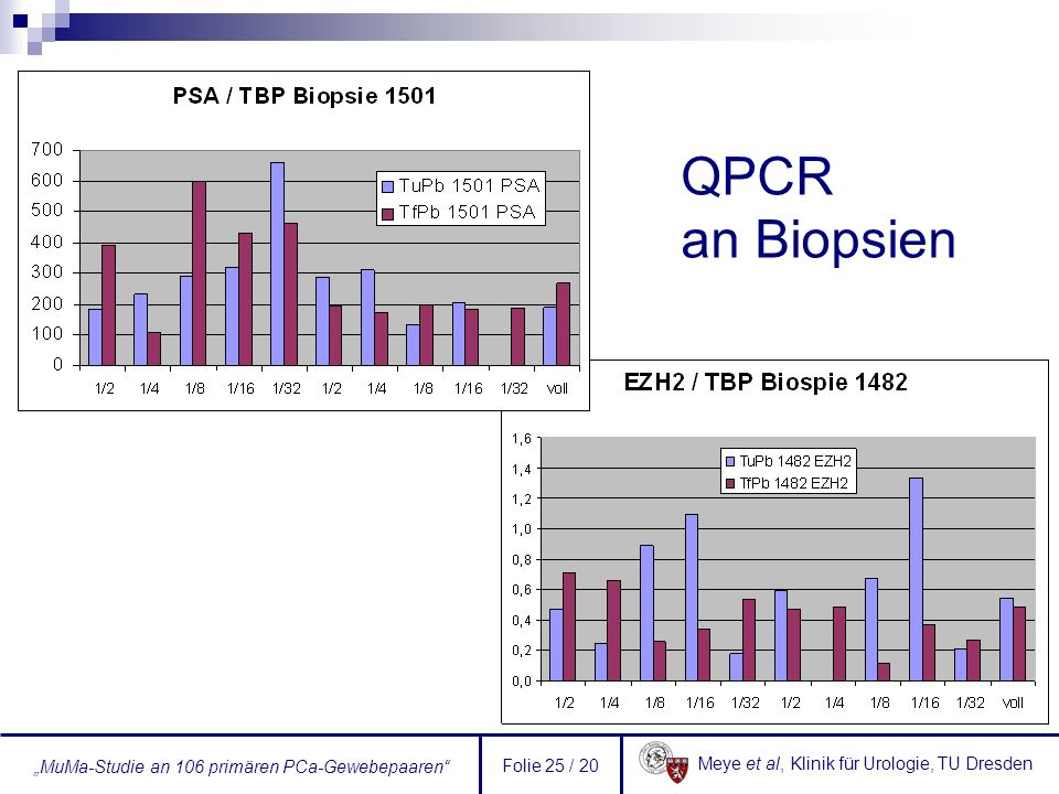 QPCR an Biopsien Folie 25 / 20