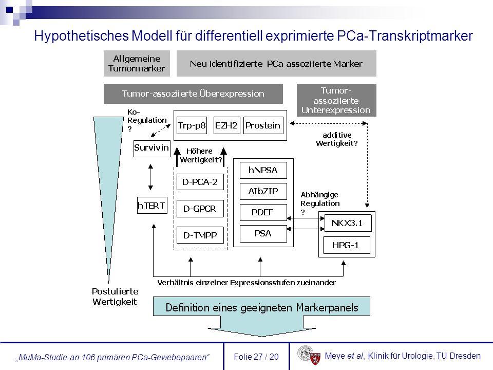 Hypothetisches Modell für differentiell exprimierte PCa-Transkriptmarker