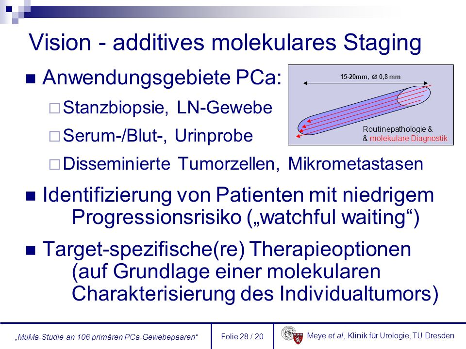 Vision - additives molekulares Staging