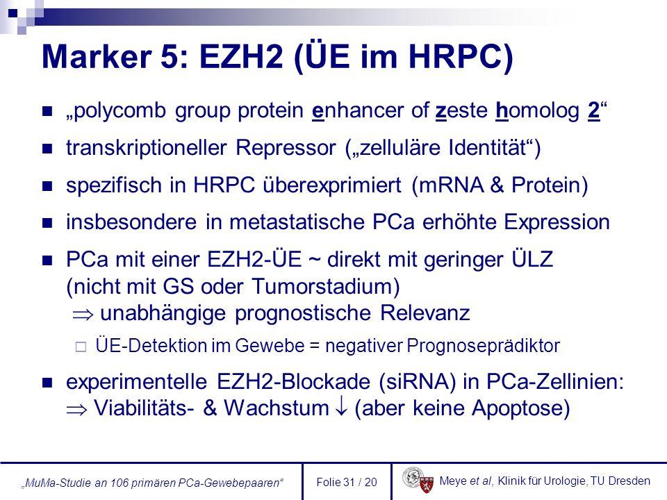 Marker 5: EZH2 (ÜE im HRPC)