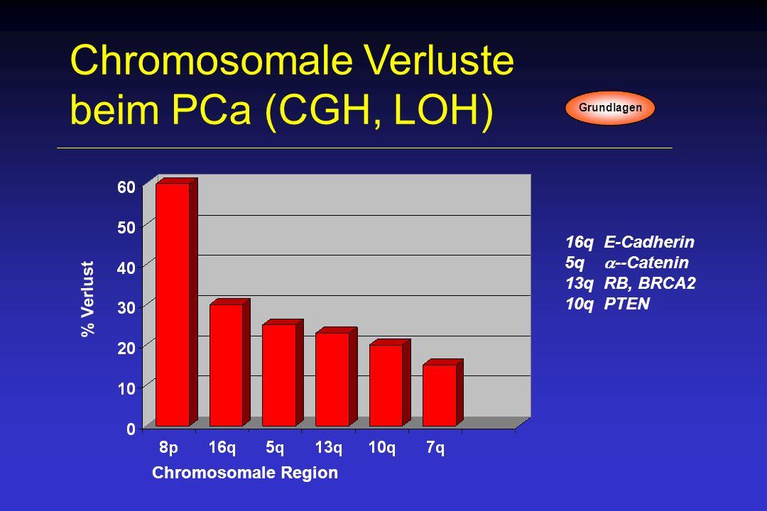 Chromosomale Verluste beim PCa (CGH, LOH)