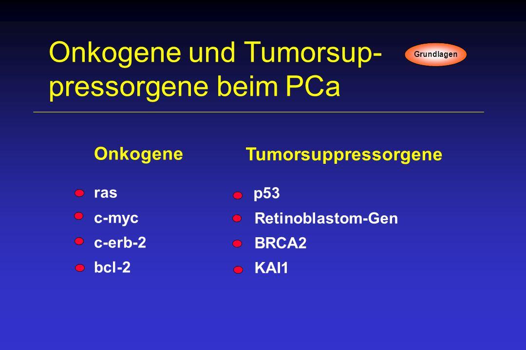 Onkogene und Tumorsup-pressorgene beim PCa