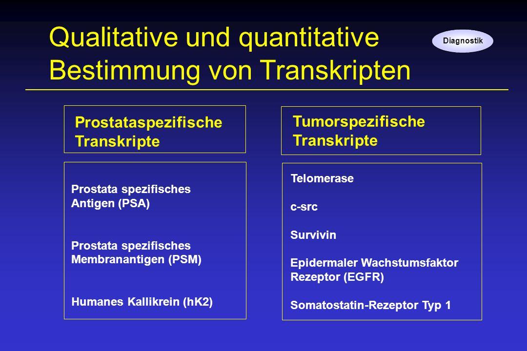 Qualitative und quantitative Bestimmung von Transkripten