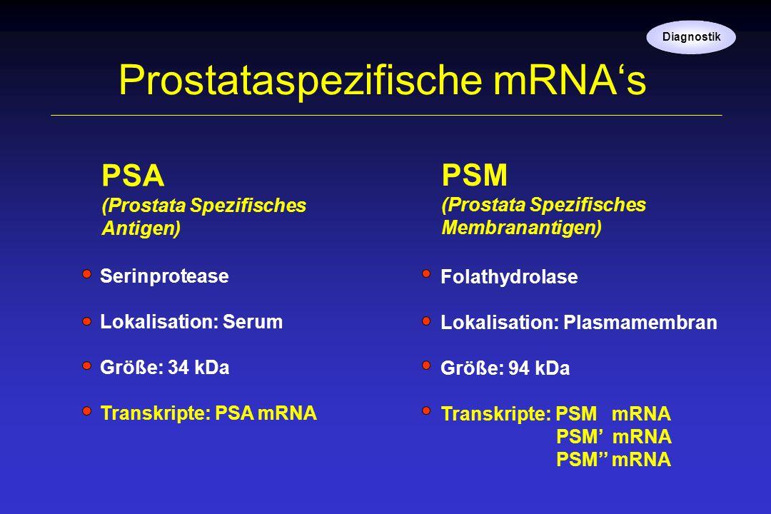 Prostataspezifische mRNA's