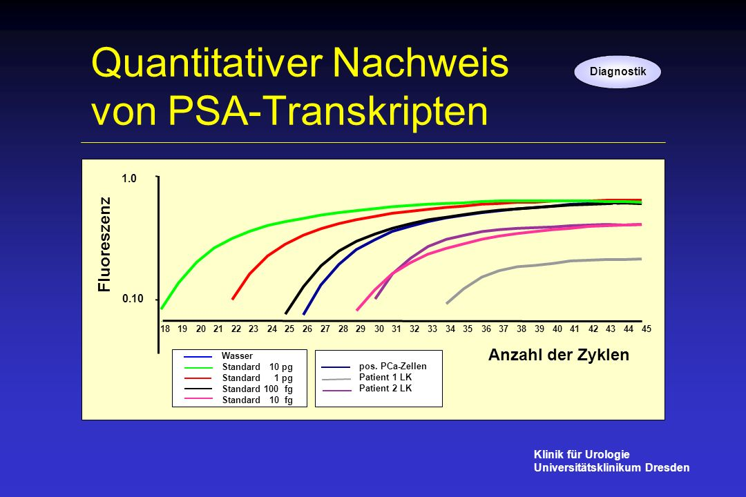 Quantitativer Nachweis von PSA-Transkripten