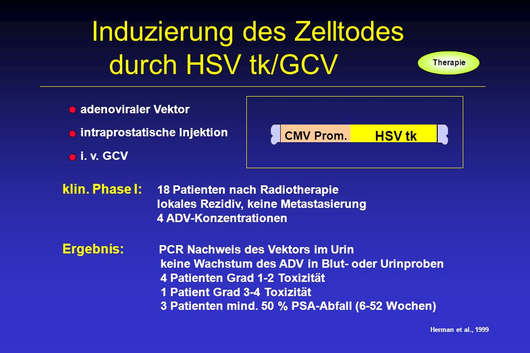 Induzierung des Zelltodes durch HSV tk/GCV