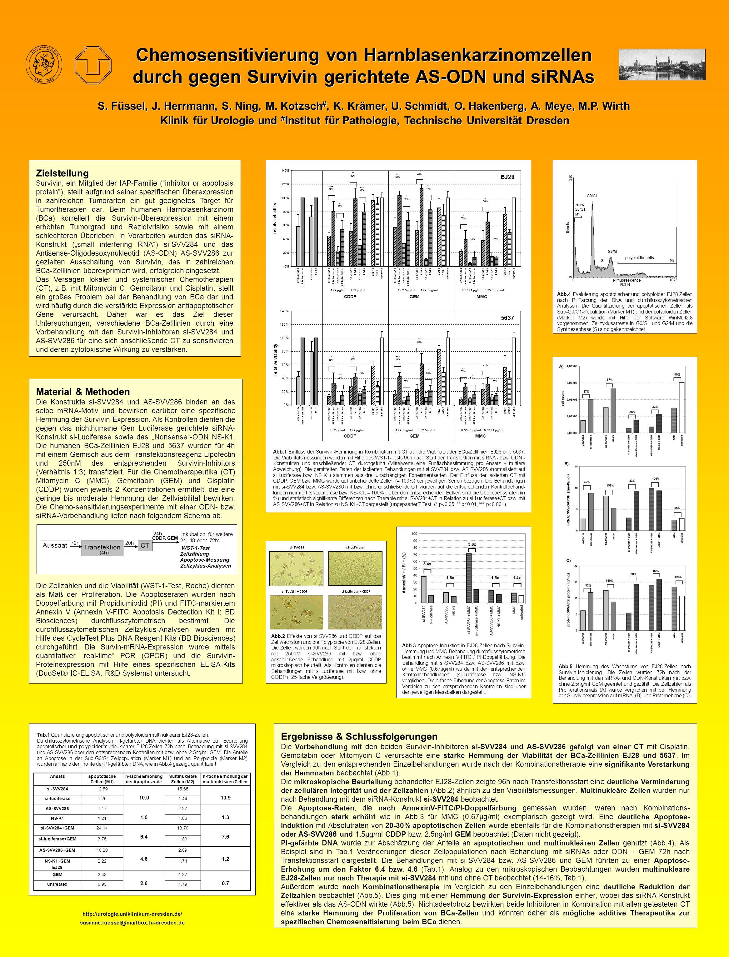 Chemosensitivierung von Harnblasenkarzinomzellen