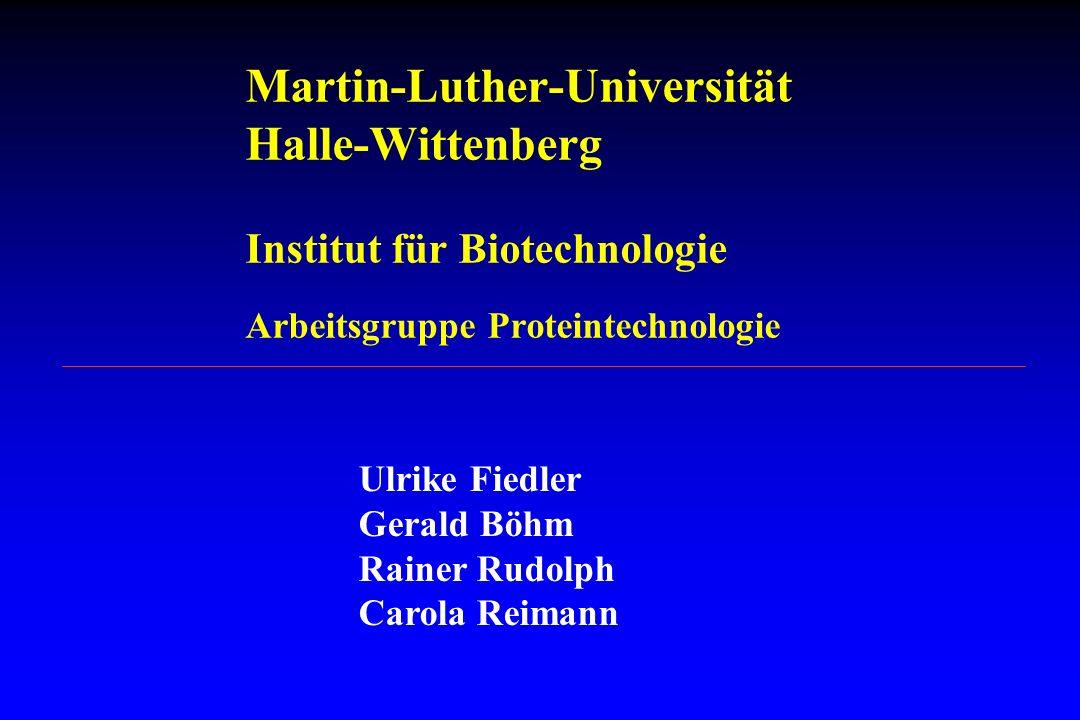 Martin-Luther-Universität Halle-Wittenberg Institut für Biotechnologie Arbeitsgruppe Proteintechnologie