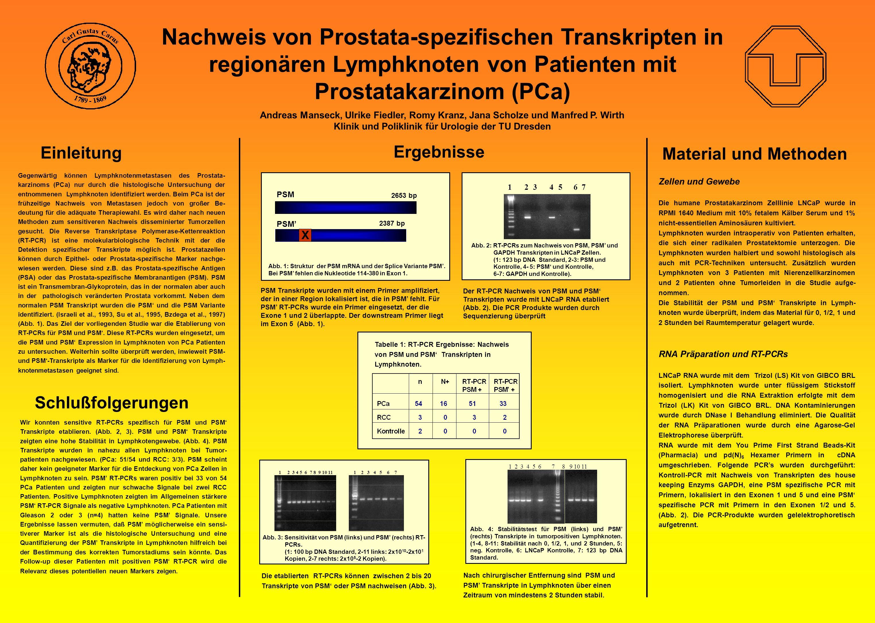 Klinik und Poliklinik für Urologie der TU Dresden