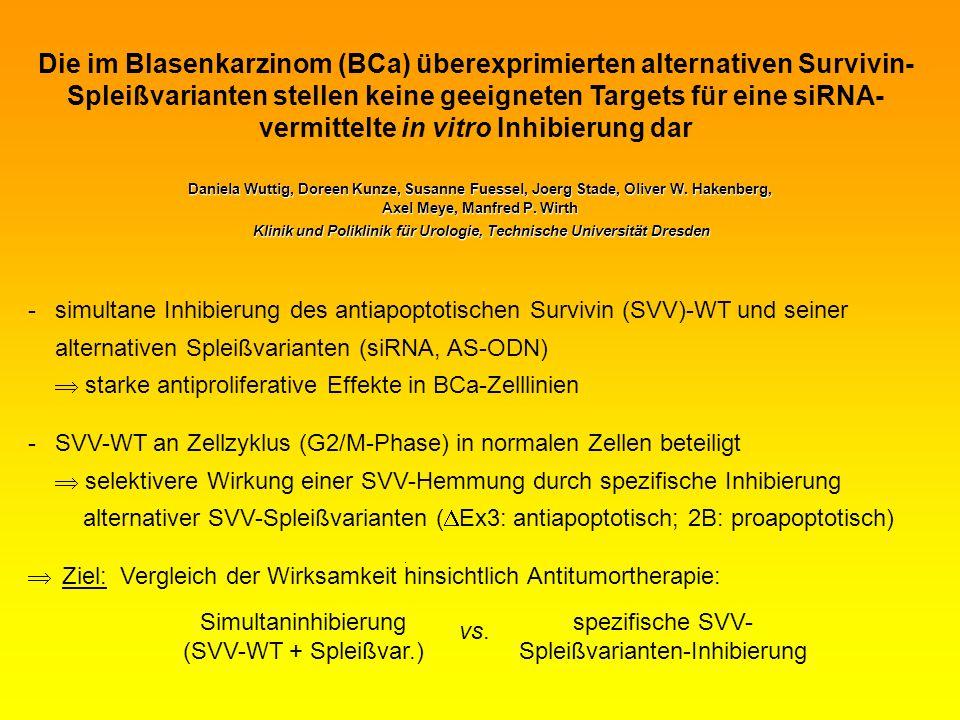 Die im Blasenkarzinom (BCa) überexprimierten alternativen Survivin-Spleißvarianten stellen keine geeigneten Targets für eine siRNA-vermittelte in vitro Inhibierung dar