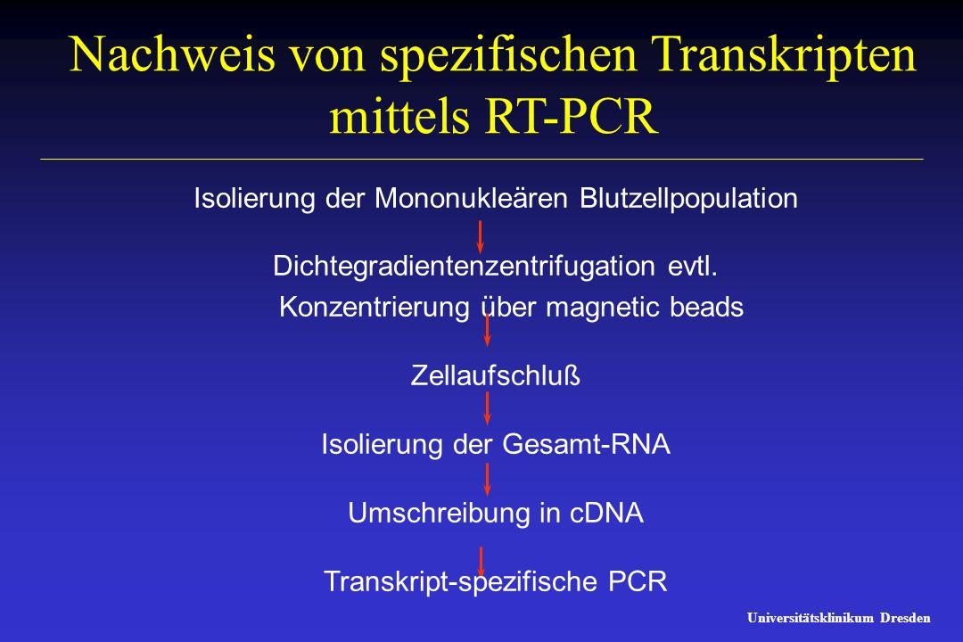 Nachweis von spezifischen Transkripten mittels RT-PCR