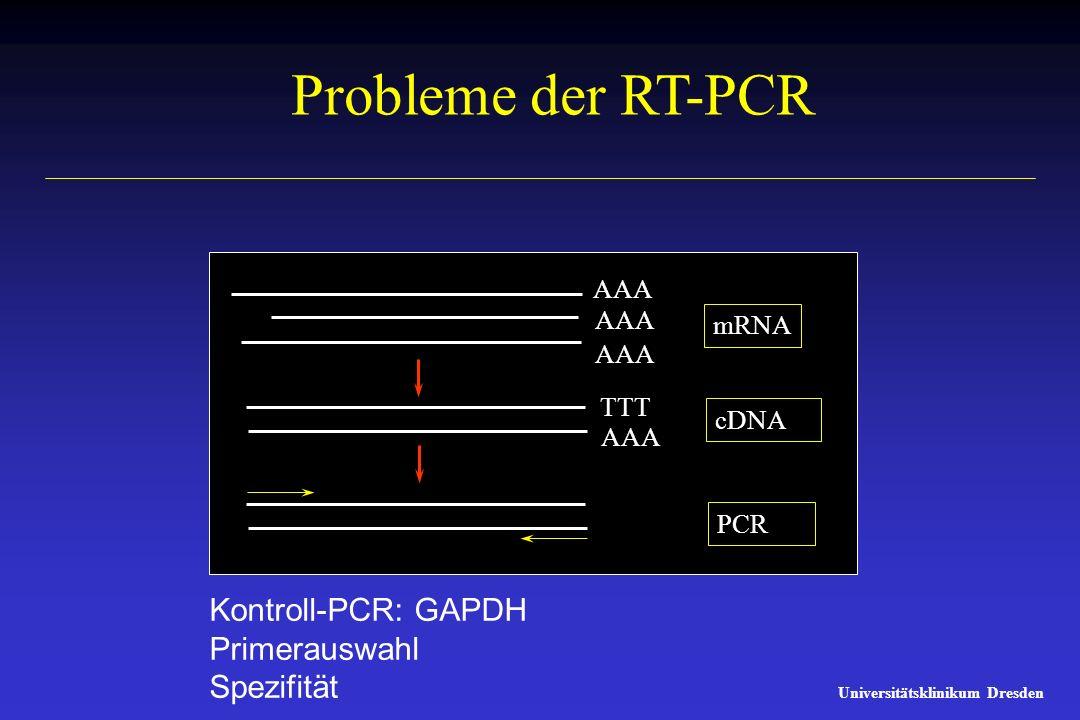 Probleme der RT-PCR Kontroll-PCR: GAPDH Primerauswahl Spezifität AAA