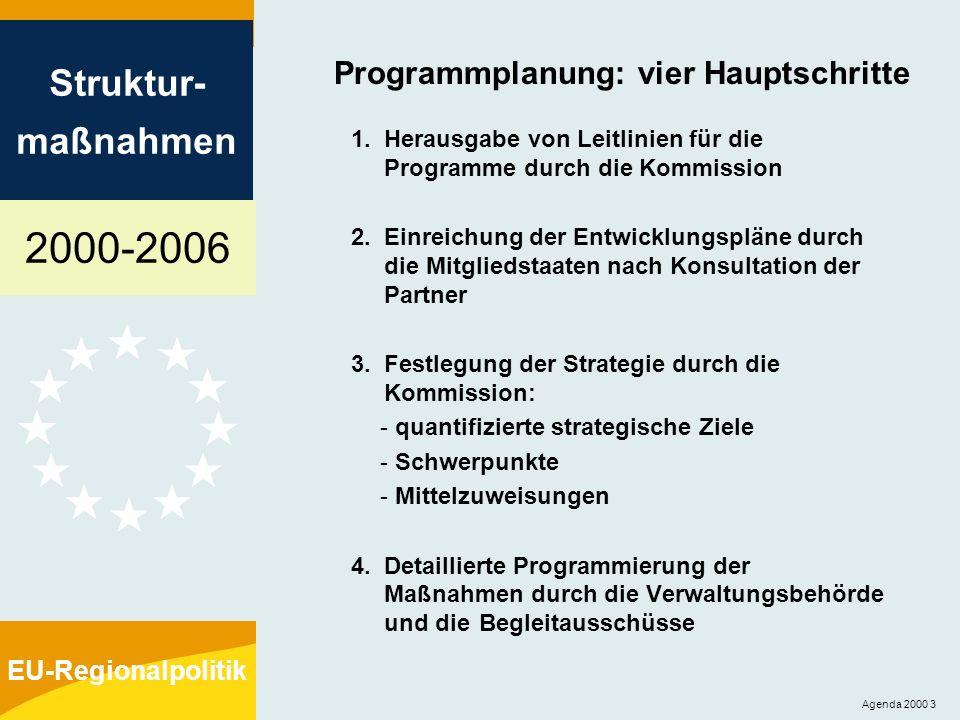 Programmplanung: vier Hauptschritte