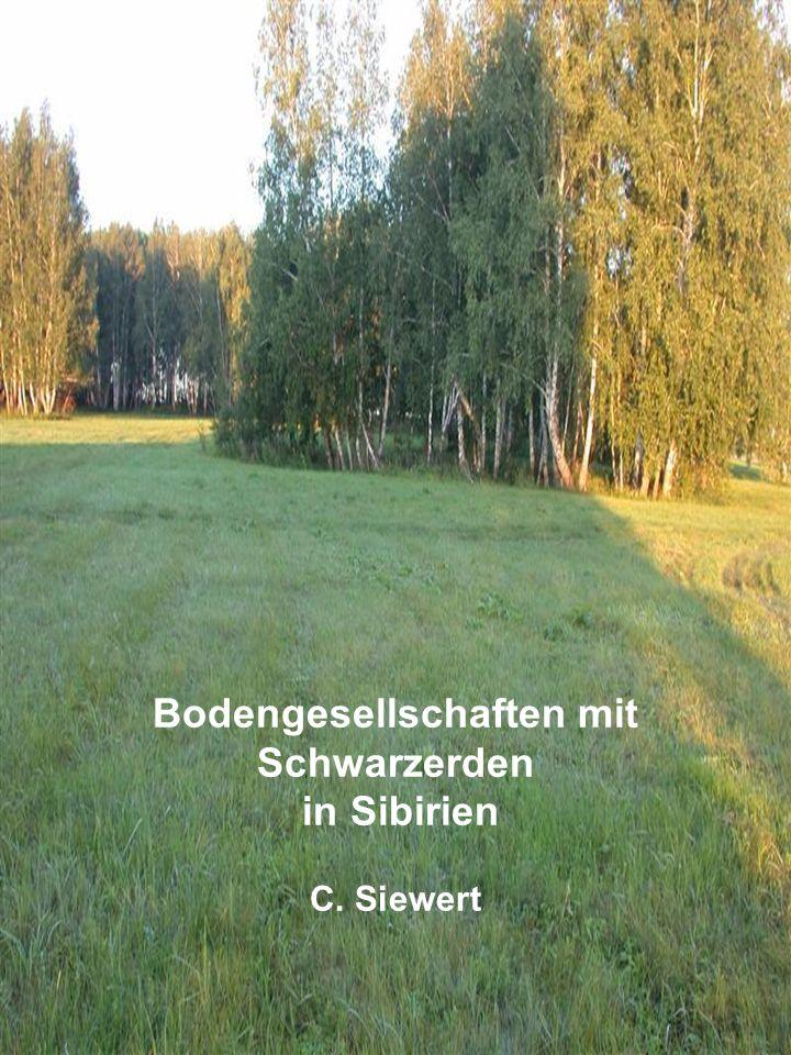 Bodengesellschaften mit Schwarzerden
