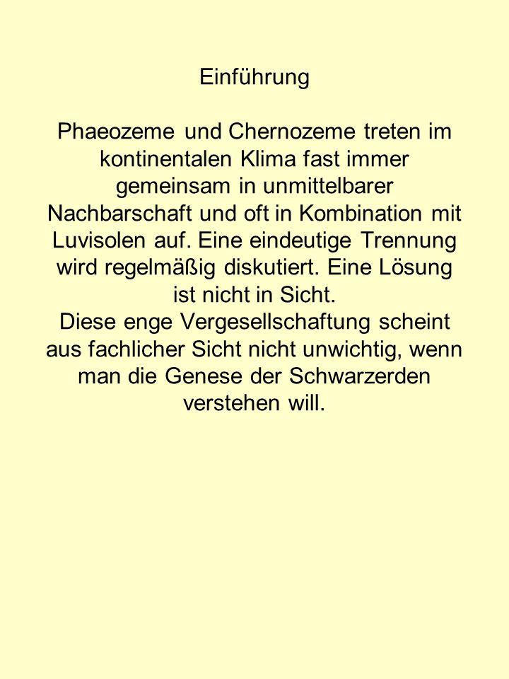 Einführung Phaeozeme und Chernozeme treten im kontinentalen Klima fast immer gemeinsam in unmittelbarer Nachbarschaft und oft in Kombination mit Luvisolen auf.