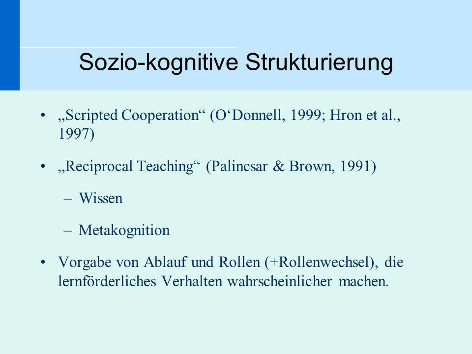 Sozio-kognitive Strukturierung